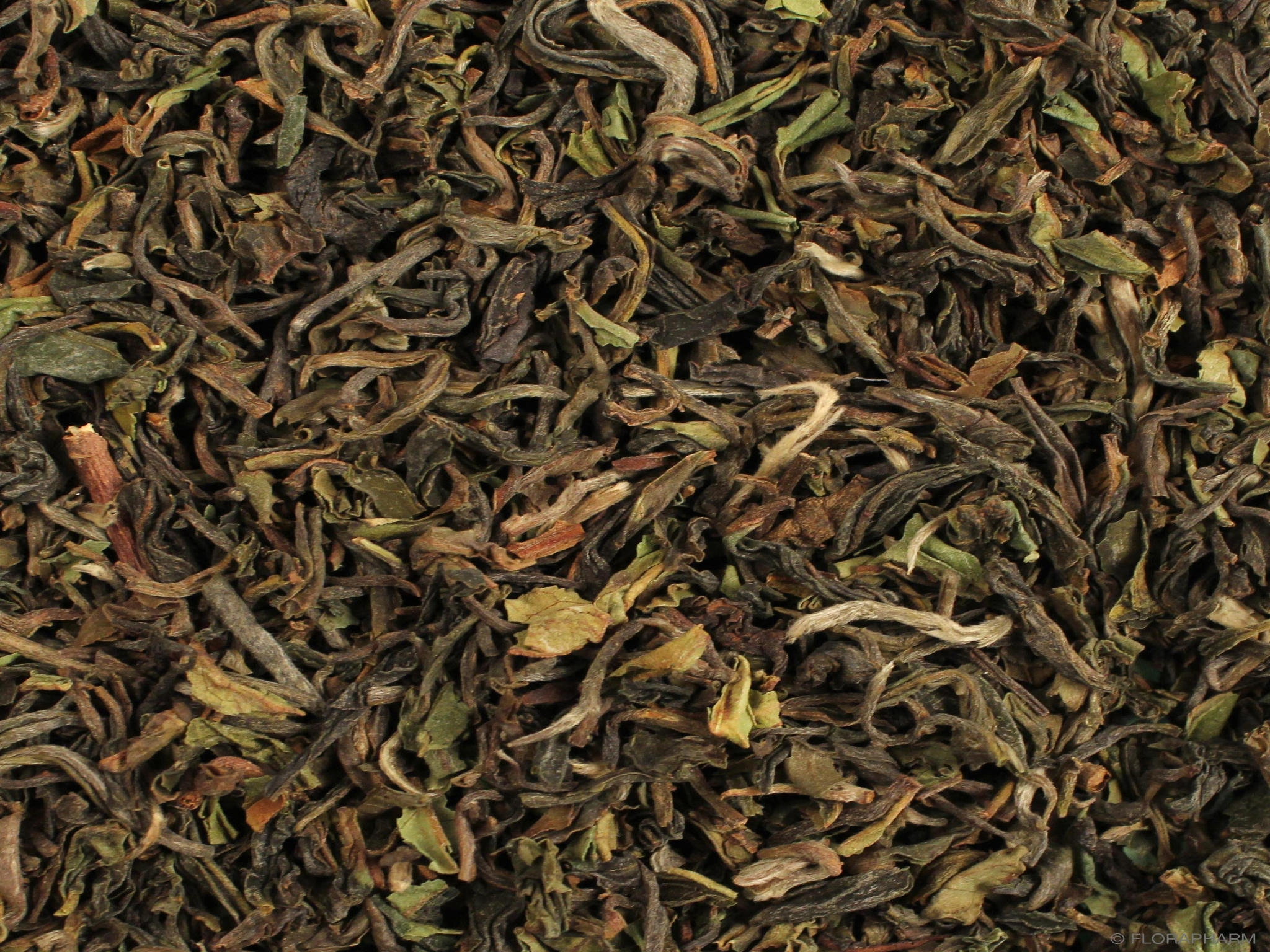 Darjeeling Royal Garden first flush FTGFOP1, Schwarzer Tee