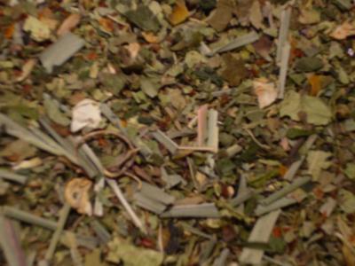 Kräuterwirbel Kräutertee ohne Aroma