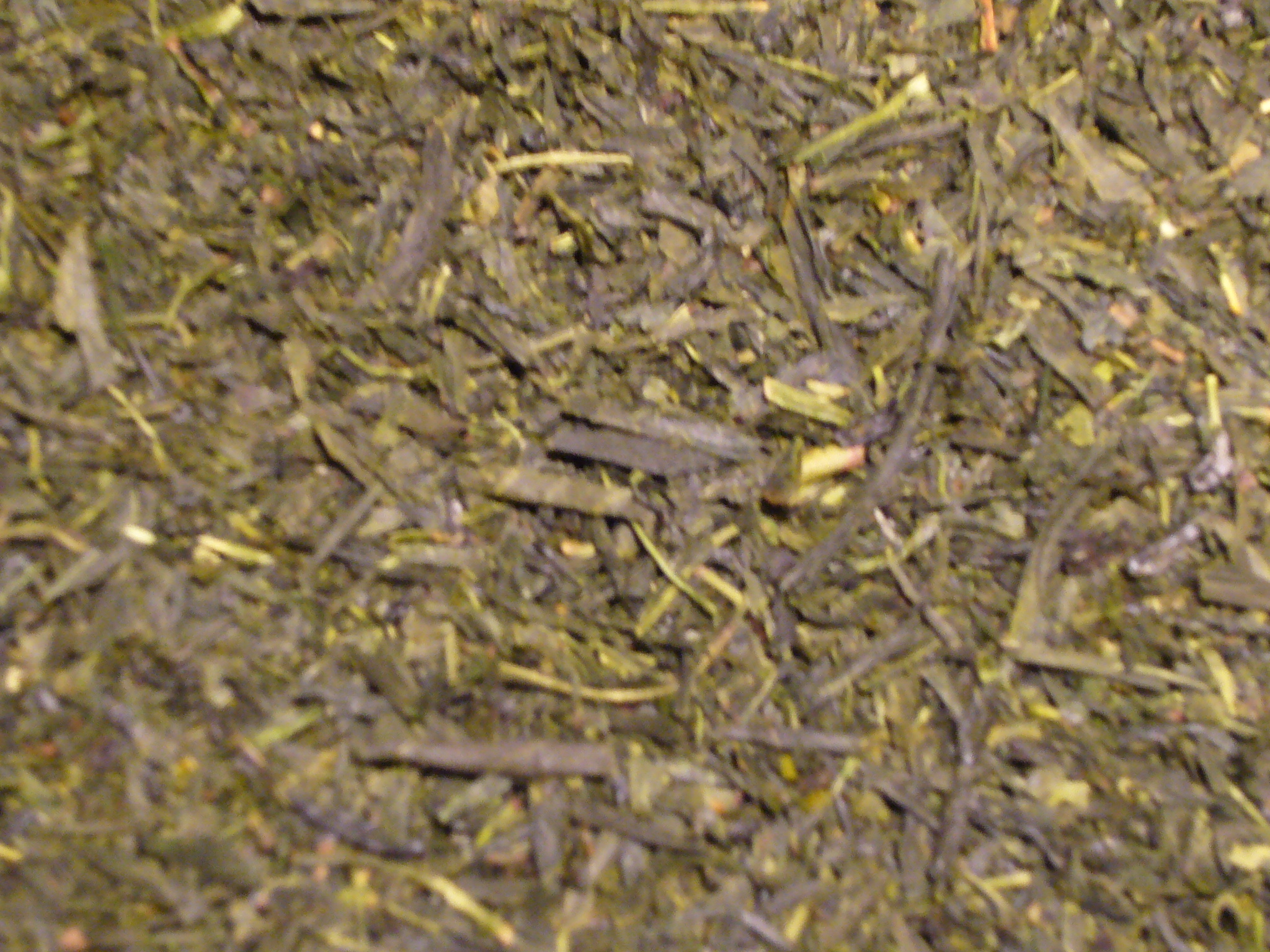 Japan Sencha Grüner Tee